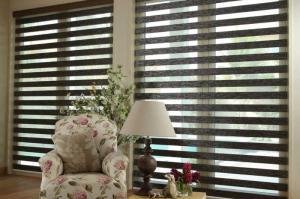 Duplex Blinds of Living Area