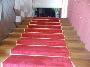 Stair Carpet in Club Of Asia, Wafi Mall, Dubai
